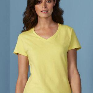 Premium Cotton Ladies V-Neck T-Shirt_Titel