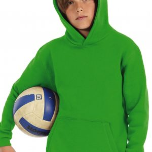 Kids Hooded Sweat WK681_Titel